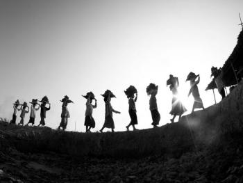 劳作中的缅甸妇女