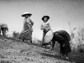 劳作中的缅甸妇女05
