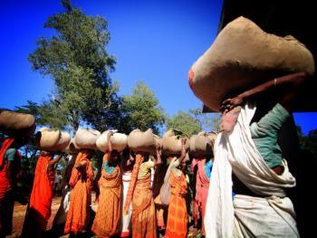 孟加拉的采茶女07