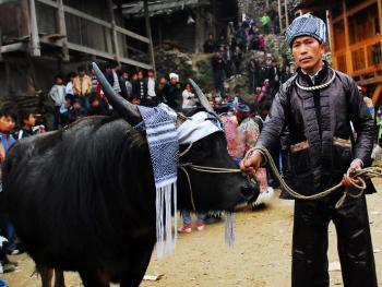 苗族牯藏节10