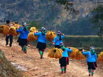 苗族牯藏节