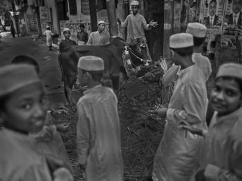 孟加拉宰牲节10
