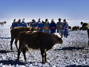 蒙古族兴畜节10