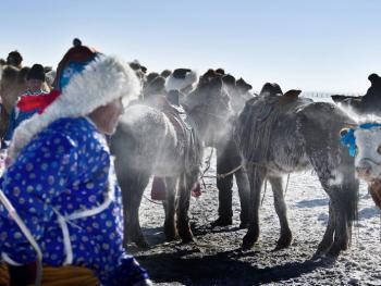 蒙古族兴畜节07