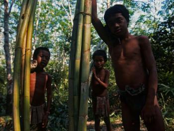 印度尼西亚丛林里的孩子07