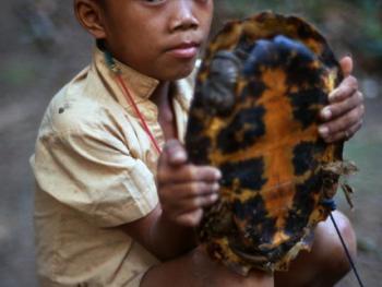 印度尼西亚丛林里的孩子08