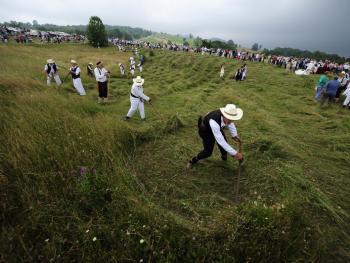 瑞扎克的割草活动7