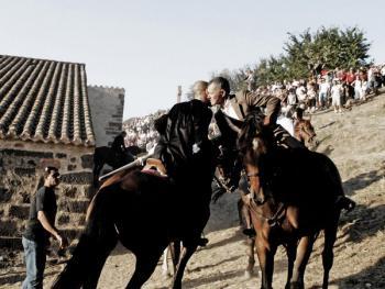 撒丁岛赛马会10