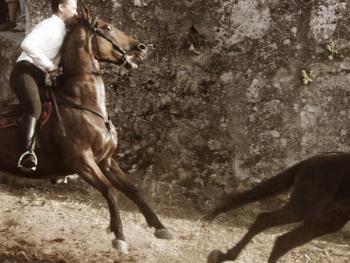 撒丁岛赛马会09