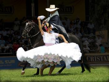 马背上的求爱舞2