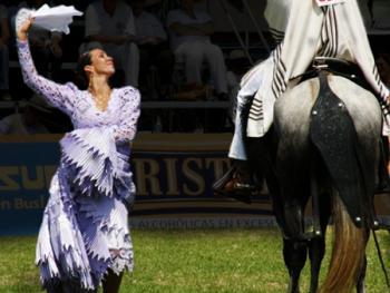 马背上的求爱舞3