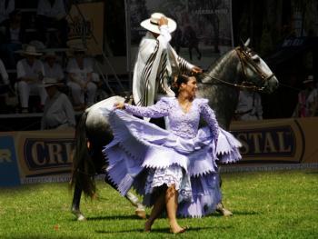 马背上的求爱舞4