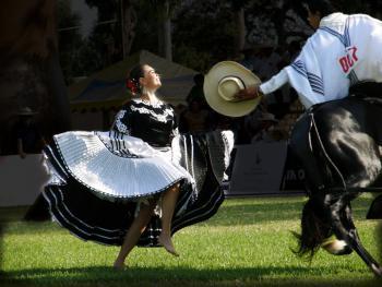马背上的求爱舞6