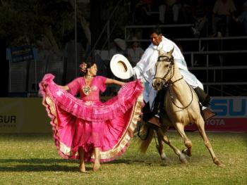 马背上的求爱舞8