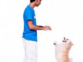 和宠物在一起的人3