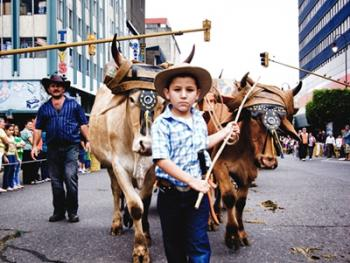 哥斯达黎加牛车游行08