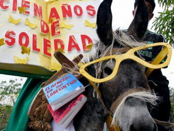 哥伦比亚驴子节10