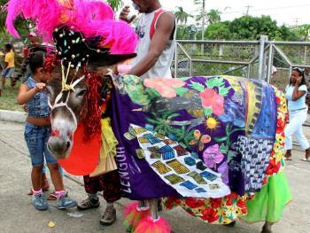 哥伦比亚驴子节11