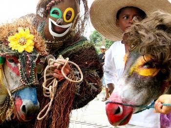 哥伦比亚驴子节03