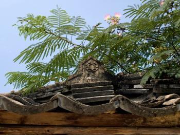 韩国传统建筑上的瓦片11