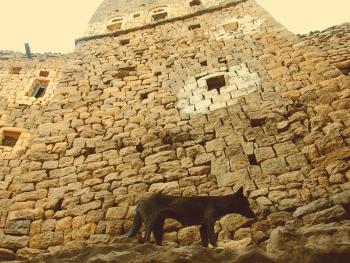 也门建筑13