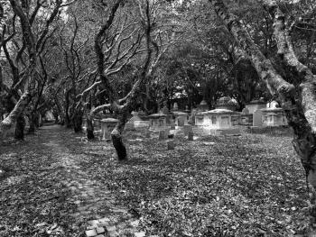古老的新教徒墓地