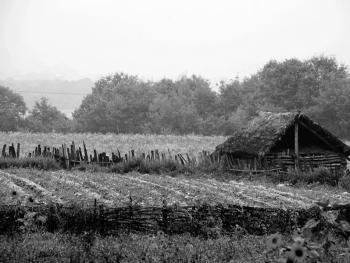 神农架的垛壁子