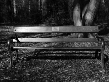 纪念长椅05