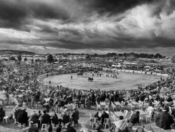 骆驼摔跤节