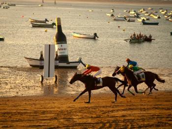 沙滩赛马10