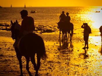 沙滩赛马12
