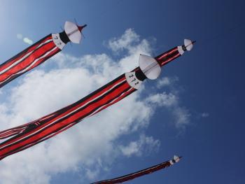 鸟形风筝表演赛