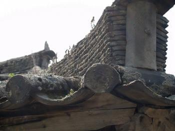 东北朝鲜族传统瓦房及瓦当11