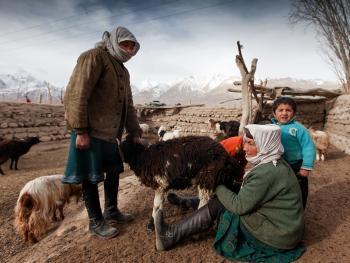 塔吉克传统民居14
