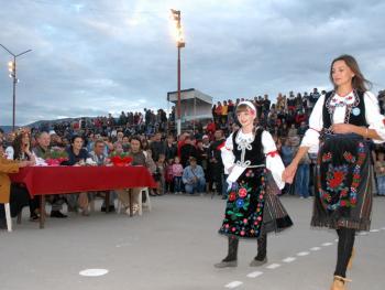 塞尔维亚小镇上的美食节11