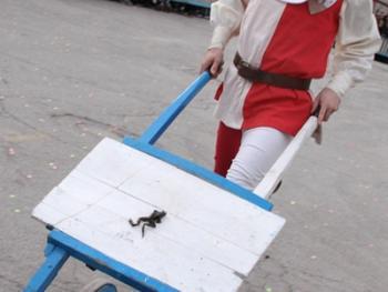费尔米尼亚诺的推蛙赛11