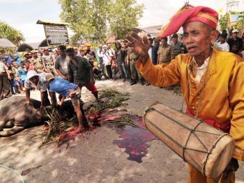 印尼凯里人的割礼07