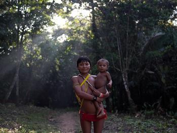 亚马逊流域的亚诺玛米传统05