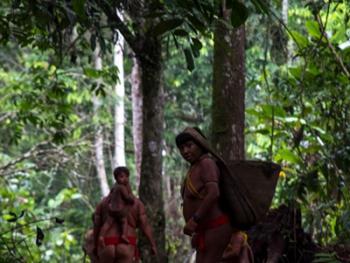 亚马逊流域的亚诺玛米传统07