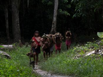 亚马逊流域的亚诺玛米传统08