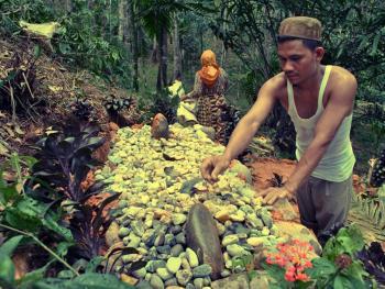 北苏门答腊简单的葬礼10