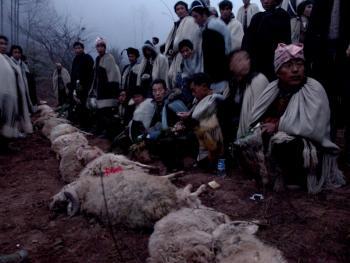 彝人祭祖12