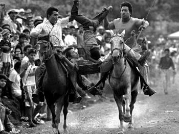 哥伦比亚马术04
