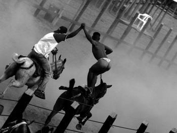 哥伦比亚马术07