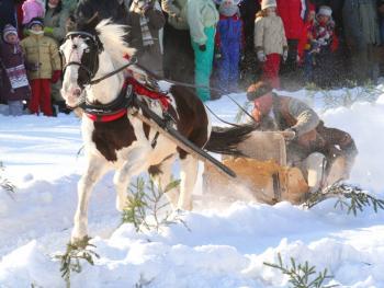 马拉雪橇比赛06