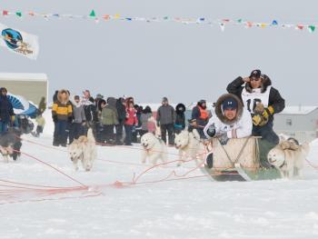 狗拉雪橇比赛03