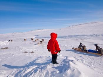 狗拉雪橇比赛06