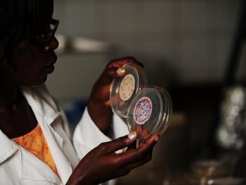 乌干达饮用水改造14