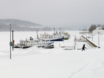 芬兰的冰泳12