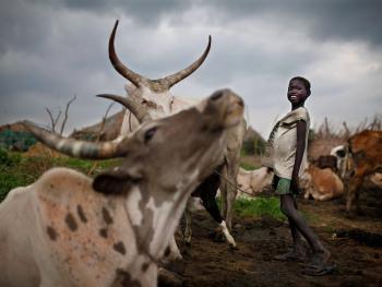 南苏丹平静的乡村生活12